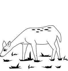 Black and white fawn in a field vector