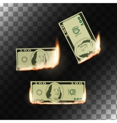 Burning money on transparent background vector image vector image