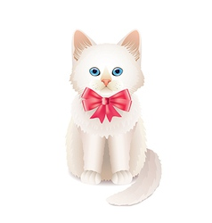 Kitten pink bow vector