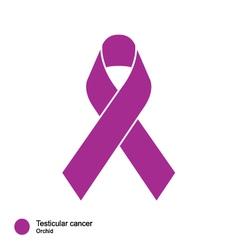 Testicular cancer ribbon vector