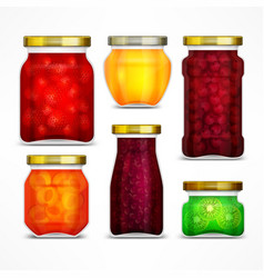 natural fruit jam preserves vector image vector image