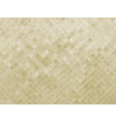 elegant glittering background vector image