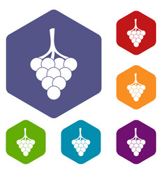 Grapes on the branch icons set hexagon vector