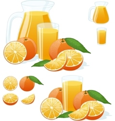 Orange fresh set vector