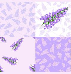 purple flowers seamless pattern vector image