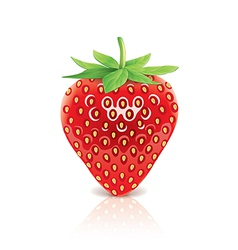 Object strawberry vector