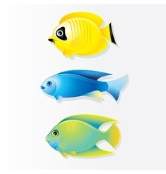 Cartoon coral reef fish image vector