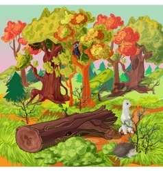 Forest and animals vector