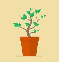 Plant in pot flat icon vector
