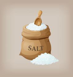 Sea salt in jute sack vector