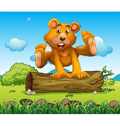 A bear playing with the trunk outdoor vector