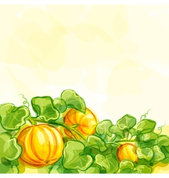 Background with pumpkins - eps10 vector