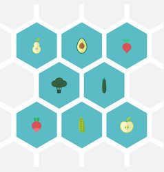 Flat icons alligator pear bean jonagold and vector