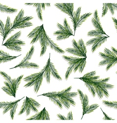 Seamless pattern with spruce or pine branches vector