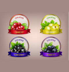 Berry labels realistic eco collection vector