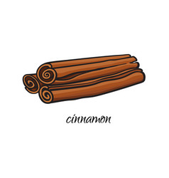 Flat sketch cinnamon sticks isolated vector