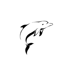 Dolphin jumping Dolphin logo vector image