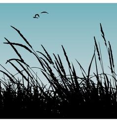 Reeds vector