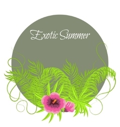 Summer tropical plants and hibiscus flowers in vector