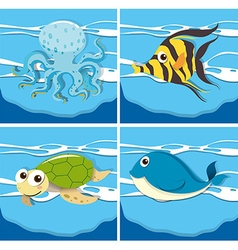 Four different sea animals vector