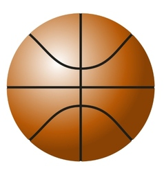Basket ball vector