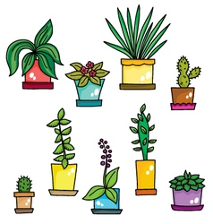 color flowers in pots vector image