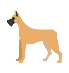 Great dane dog vector image vector image