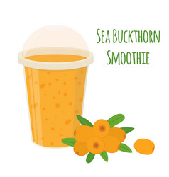 Sea buckthorn smoothie detox with berries vector