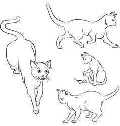 Cat in motion sketches vector