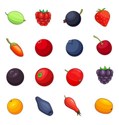 berries icons set cartoon style vector image