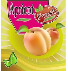 Fresh apricot juice banner vector