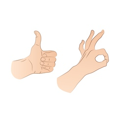 Hands vector image vector image