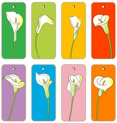 Calla price tags vector