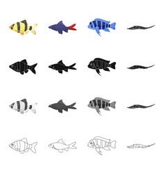Different types of aquarium and sea fish barbeque vector