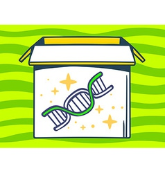 Open box with icon of dna molecule chain vector
