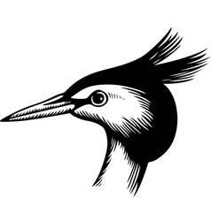 UntitHead of a Bird vector image