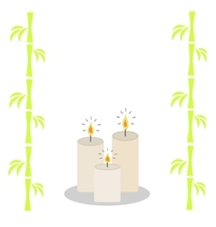 Three burning candles and bamboo white background vector