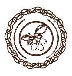 Coffee tree icon image vector