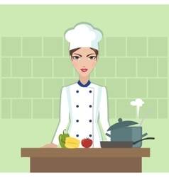 Chef cooking food flat style vector