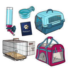 Sketch hand drawn pet transport travel set on vector