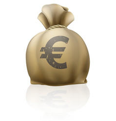 euro sack vector image