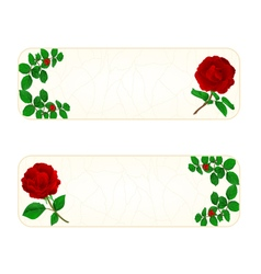 Banner cracks in the porcelain and rose vintage vector