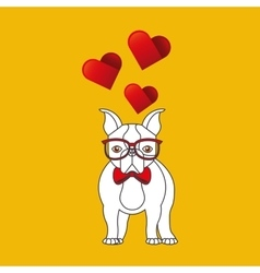 Cute couple dog pet with glasses bow heart vector