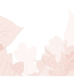 Detailed leaves background EPS 10 vector image vector image