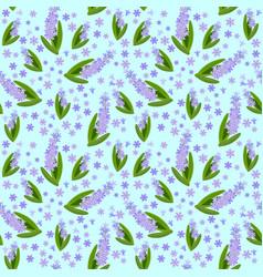 Hyacinths vector