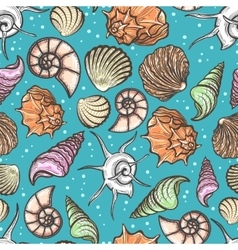 Ocean seamless pattern with colorful seashells vector image