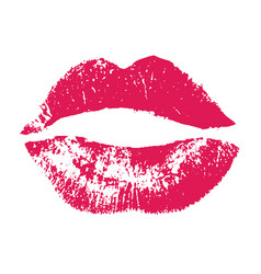 print of pink lips on white vector image vector image