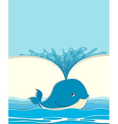 Blue whale splashing water vector