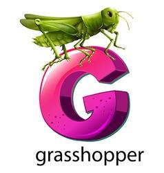 A letter G for grasshopper vector image vector image
