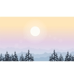 Landscape of spruce forest at morning vector image